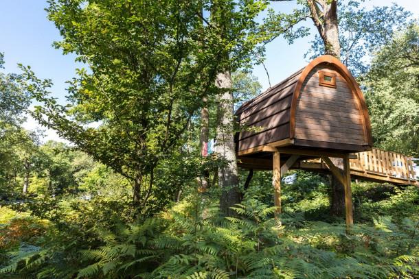 Ferienhaus Camping Le Lac des Vielles Forges - Mh Cottage 2ch 4pers (2257762), Les Mazures, Ardennes, Champagne-Ardennes, Frankreich, Bild 3