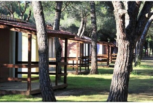 Ferienhaus Camping Parc Bellevue - Bungalow 2Ch 4pers + Terrasse (2257854), Valras Plage, Mittelmeerküste Hérault, Languedoc-Roussillon, Frankreich, Bild 10