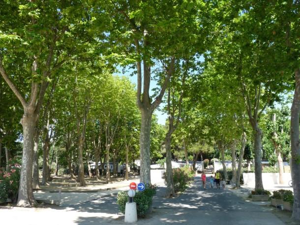 Ferienhaus Camping Domaine de la Yole 5* - Mobil-home Confort - 2 chambres - 5/6 personnes (2259185), Valras Plage, Mittelmeerküste Hérault, Languedoc-Roussillon, Frankreich, Bild 12