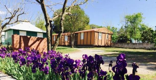 Holiday house Camping Le Fréjus - Chalet MOREA ECO 24m² (2 chambres) (2263592), Fréjus, Côte d'Azur, Provence - Alps - Côte d'Azur, France, picture 7