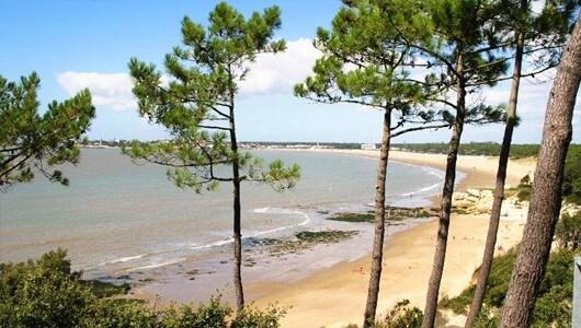 Vente privée : Charente : camping 4* près de Royan
