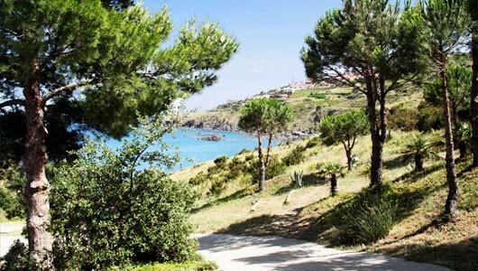 Vente privée : Languedoc : résidence face à la mer